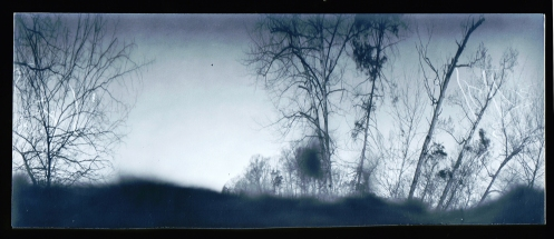 Pinhole images are almost always a bit of a surprise. I'm not sure what that dark cloudy blob is, maybe a leaf sticking up out of the ground too close to the lens hole or..... maybe some kind of ghost!